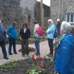 Physic Garden in Totnes